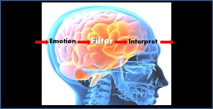 brain-filter