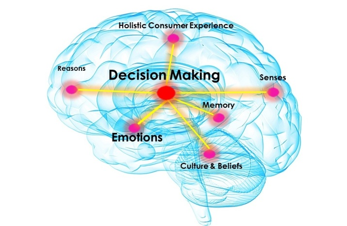 DecisionMaking_Brain